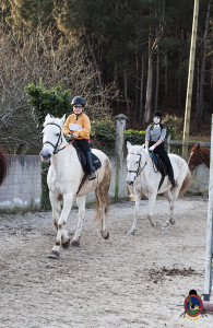 Os parrulos_clases de equitacion_hipica la coruna_Hp55
