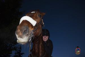 Os parrulos_clases de equitacion_hipica la coruna_Hp6