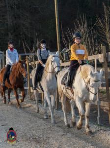 Os parrulos_clases de equitacion_hipica la coruna_Hp60