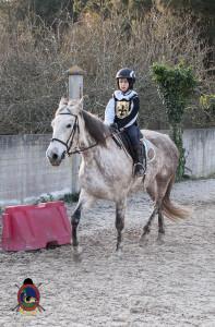Os parrulos_clases de equitacion_hipica la coruna_Hp62