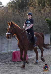 Os parrulos_clases de equitacion_hipica la coruna_Hp64