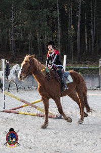 Os parrulos_clases de equitacion_hipica la coruna_Hp67