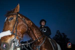 Os parrulos_clases de equitacion_hipica la coruna_Hp9
