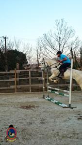 Os Parrulos_clases de salto_hipica a coruña_M5