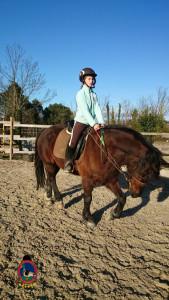 Os Parrulos_clases equitacion_hipica A Coruna_CC13
