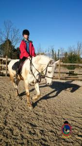 Os Parrulos_clases equitacion_hipica A Coruna_CC14