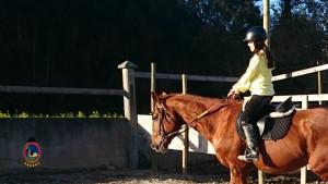 Os Parrulos_clases equitacion_hipica A Coruna_CC22