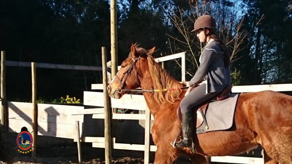 Os Parrulos_clases equitacion_hipica A Coruna_CC23