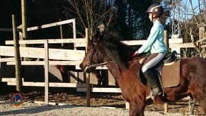 Os Parrulos_clases equitacion_hipica A Coruna_CC25