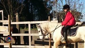 Os Parrulos_clases equitacion_hipica A Coruna_CC26