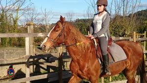 Os Parrulos_clases equitacion_hipica A Coruna_CC29