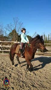 Os Parrulos_clases equitacion_hipica A Coruna_CC3