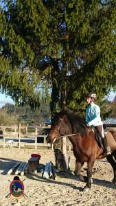 Os Parrulos_clases equitacion_hipica A Coruna_CC39