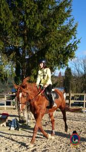 Os Parrulos_clases equitacion_hipica A Coruna_CC40