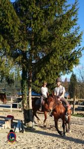 Os Parrulos_clases equitacion_hipica A Coruna_CC42