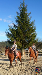 Os Parrulos_clases equitacion_hipica A Coruna_CC43