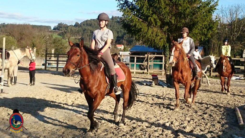 Os Parrulos_clases equitacion_hipica A Coruna_CC44