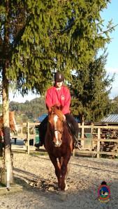 Os Parrulos_clases equitacion_hipica A Coruna_CC46