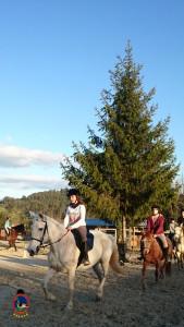 Os Parrulos_clases equitacion_hipica A Coruna_CC51