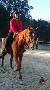 Os Parrulos_clases equitacion_hipica A Coruna_CC58