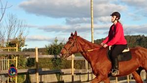 Os Parrulos_clases equitacion_hipica A Coruna_CC65