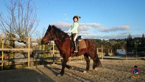 Os Parrulos_clases equitacion_hipica A Coruna_CC66