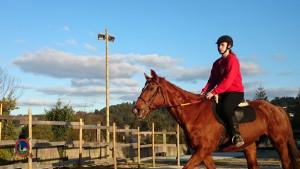 Os Parrulos_clases equitacion_hipica A Coruna_CC68