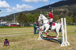 Os Parrulos_mondonedo_hipica_clases equitacion_1