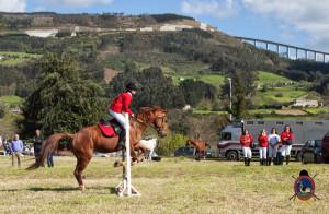 Os Parrulos_mondonedo_hipica_clases equitacion_17