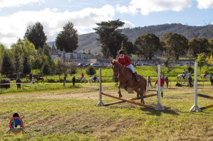 Os Parrulos_mondonedo_hipica_clases equitacion_19