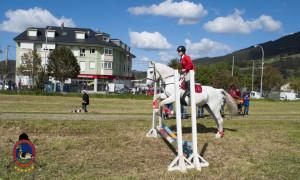 Os Parrulos_mondonedo_hipica_clases equitacion_2