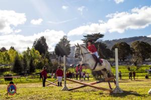 Os Parrulos_mondonedo_hipica_clases equitacion_23