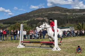 Os Parrulos_mondonedo_hipica_clases equitacion_25