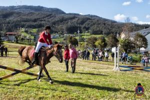 Os Parrulos_mondonedo_hipica_clases equitacion_26