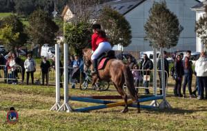Os Parrulos_mondonedo_hipica_clases equitacion_27
