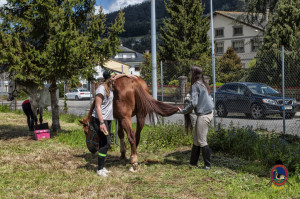 Os Parrulos_mondonedo_hipica_clases equitacion_313