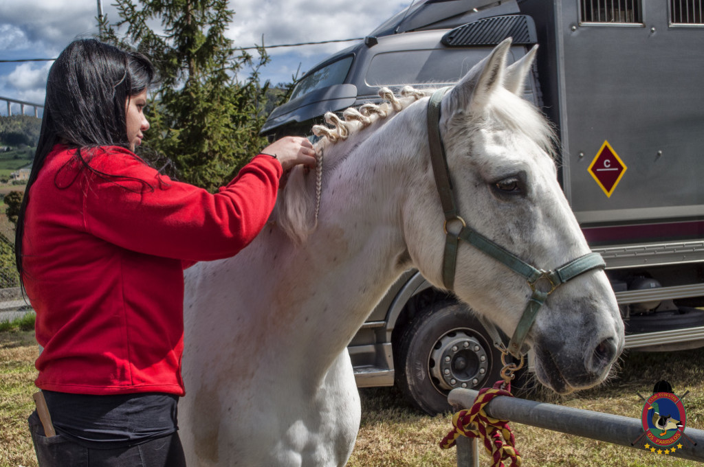 Os Parrulos_mondonedo_hipica_clases equitacion_322