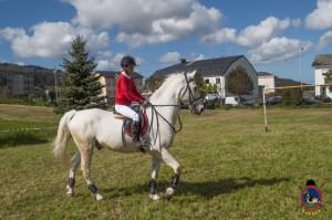 Os Parrulos_mondonedo_hipica_clases equitacion_338