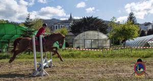 Os Parrulos_mondonedo_hipica_clases equitacion_34
