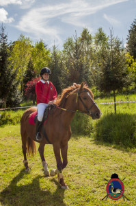 Os Parrulos_mondonedo_hipica_clases equitacion_340