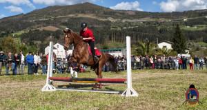 Os Parrulos_mondonedo_hipica_clases equitacion_36