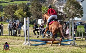Os Parrulos_mondonedo_hipica_clases equitacion_38