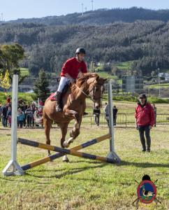 Os Parrulos_mondonedo_hipica_clases equitacion_39