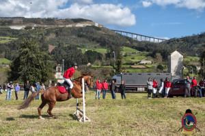 Os Parrulos_mondonedo_hipica_clases equitacion_40