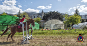 Os Parrulos_mondonedo_hipica_clases equitacion_41