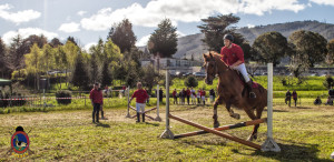 Os Parrulos_mondonedo_hipica_clases equitacion_42