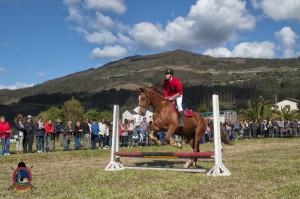 Os Parrulos_mondonedo_hipica_clases equitacion_43