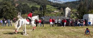 Os Parrulos_mondonedo_hipica_clases equitacion_46