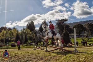 Os Parrulos_mondonedo_hipica_clases equitacion_49