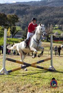 Os Parrulos_mondonedo_hipica_clases equitacion_51